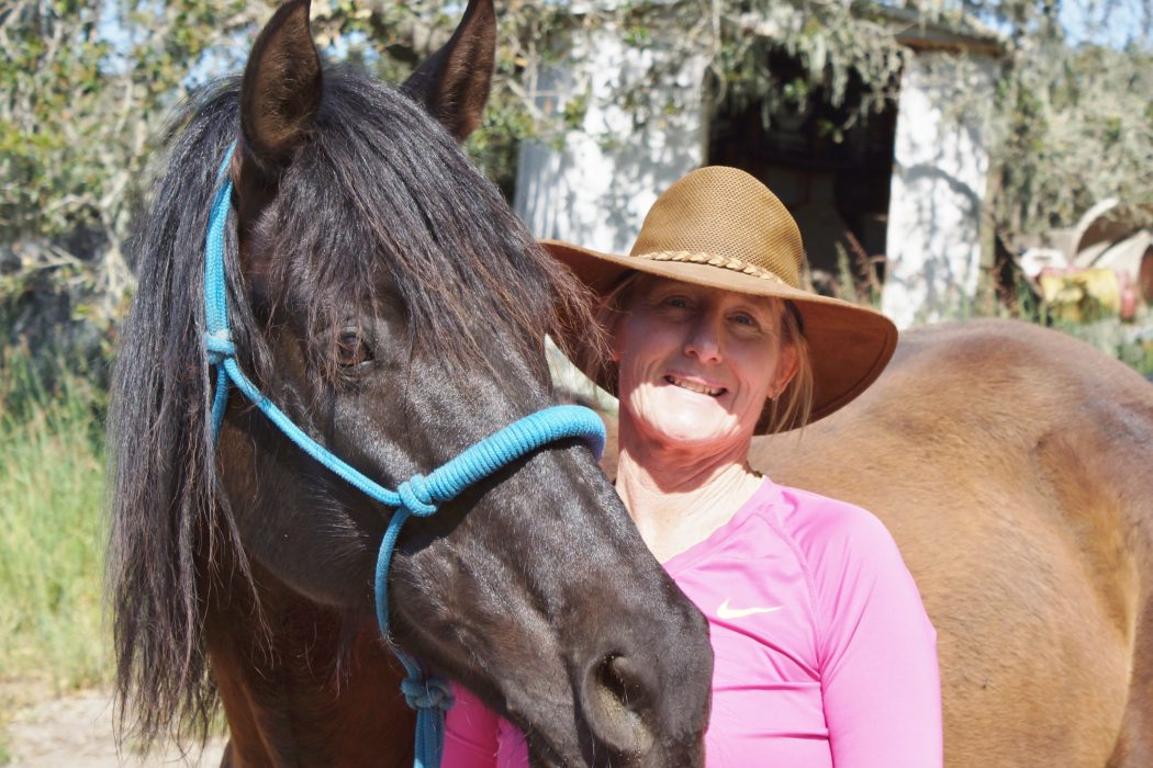 Connecting with the Outside of a Horse | SLO Horse News