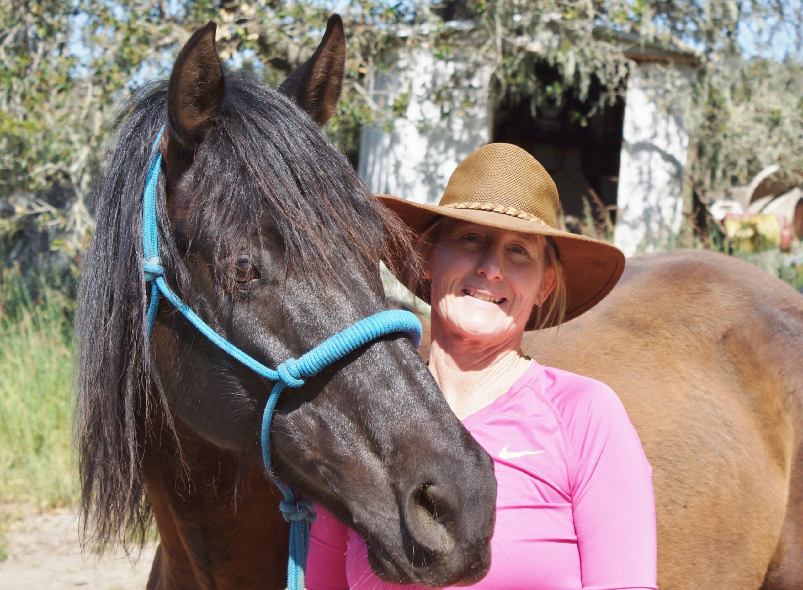 Connecting with the Outside of a Horse   SLO Horse News