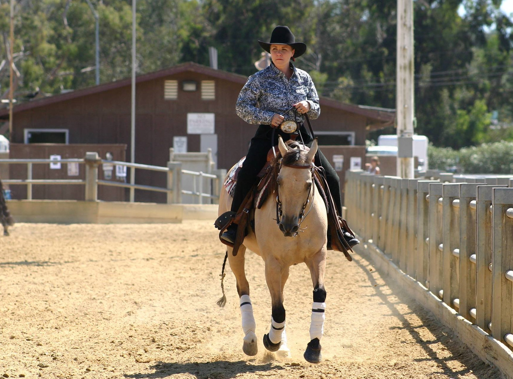 Which Riding Style Is Best English Or Western Slo Horse News