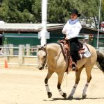 Which Riding Style is Best, English or Western? | SLO Horse News
