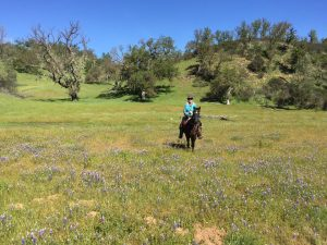 Overnight Trail Ride Adventure to the American Canyon Camp | SLO Horse News