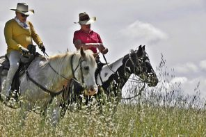 Are You and Your Horse Ready to Ride the Trails?