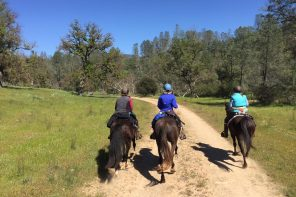 Overnight Trail Ride Adventure to the American Canyon Camp