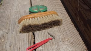 How to Streamline Your Grooming Routine | SLO Horse News