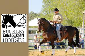 Lester Buckley Clinic : Graceful Transformation with Your Horse
