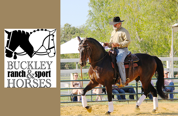 Lester Buckley Clinic : Graceful Transformation with Your Horse | SLO Horse News