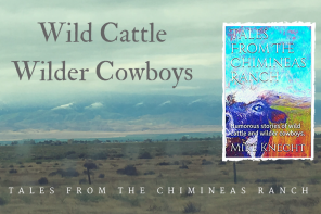 Wild Cattle, Wilder Cowboys : Tales From The Chimineas Ranch