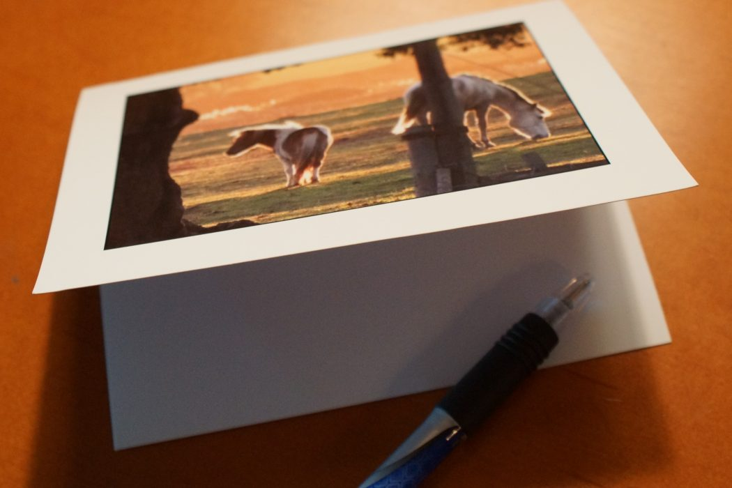 7 Reasons for Equestrians to Write a Hand-Written Note   SLO Horse News