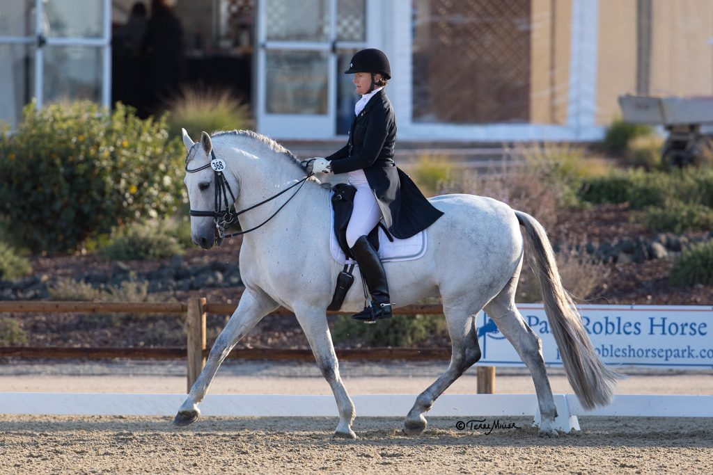 Paso Robles Dressage Summer Classic : A Step on the Path to International Dressage Competition   SLO Horse News