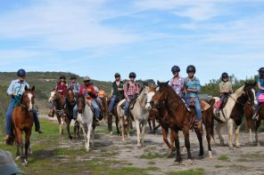 Learn How to High-Tie as You Ride with Experienced Horse Campers