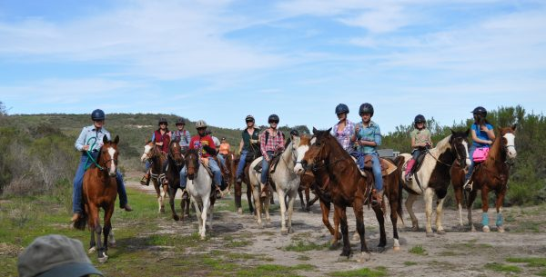 Learn How to High-Tie as You Ride with Experienced Horse Campers | SLO Horse News