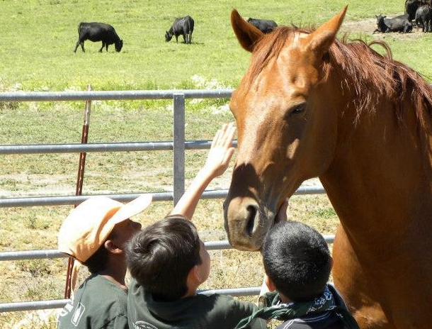Local Foster Kids Connect with Horses | SLO Horse News