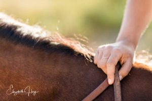Press Pause on Your Equine Moments | SLO Horse News