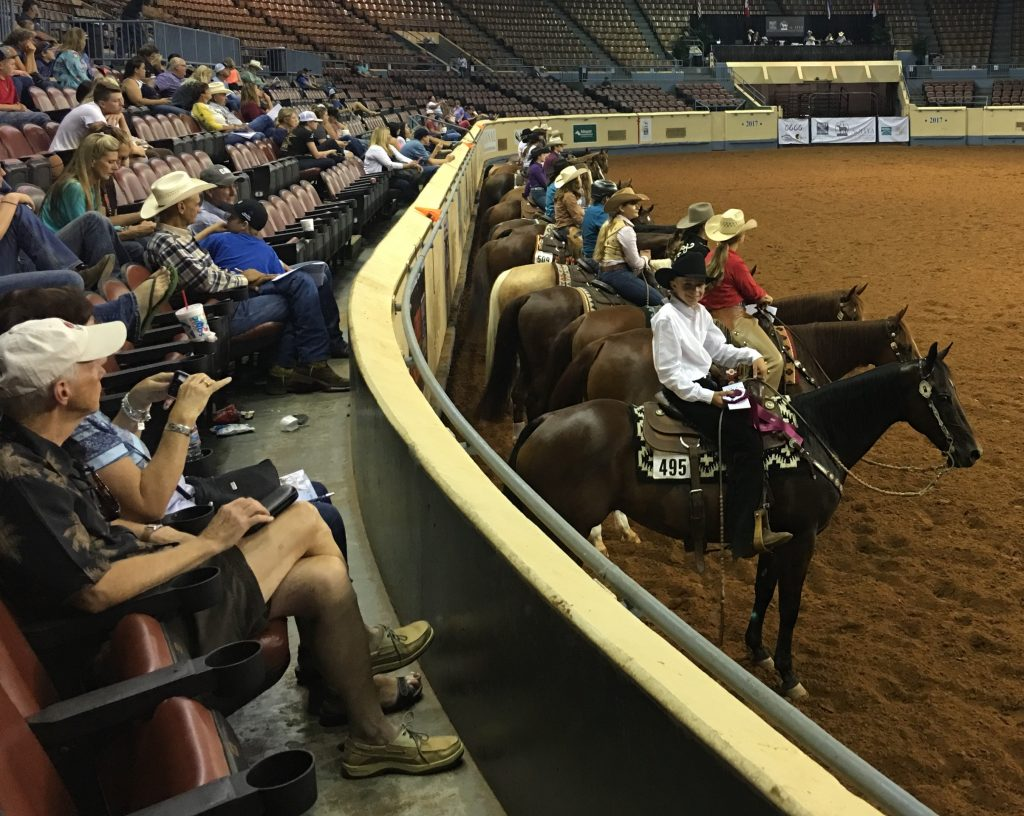 Local Teen Takes on the AQHA Youth World Championships | SLO Horse News