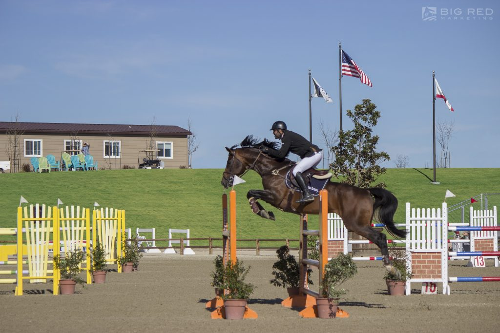 Jump into the Fun of a Hunter/Jumper Show at the Paso Robles Horse Park | SLO Horse News