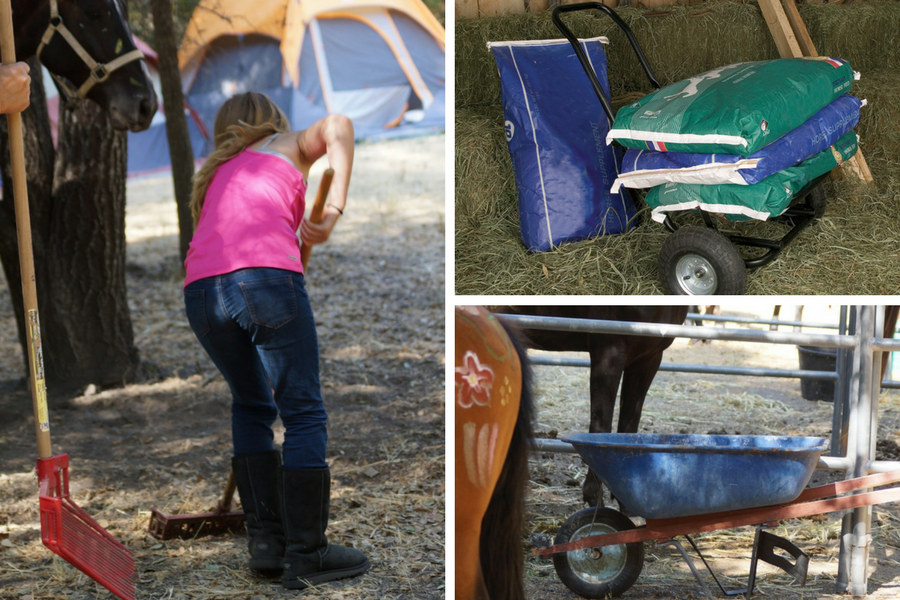 Get More Out of Your Barn Time with Time-saving Tools | SLO Horse News