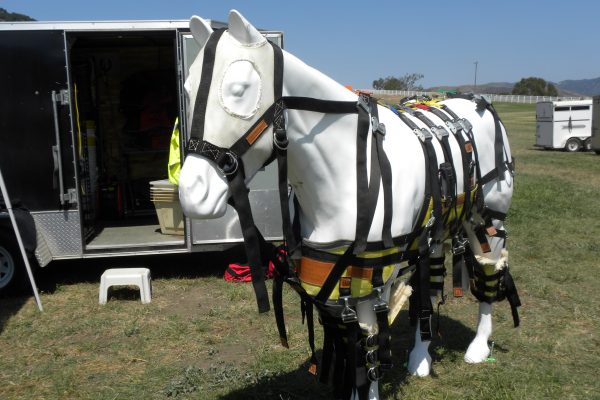 H.E.E.T. Volunteers : Not Just Fire Rescuers | SLO Horse News