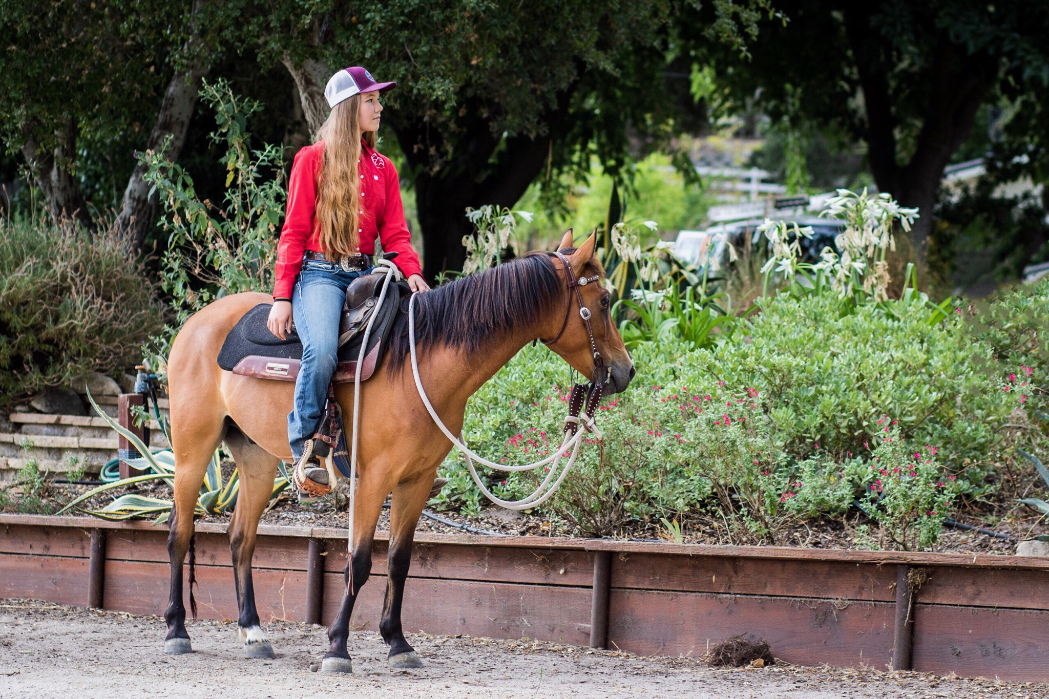 Andrea Cao: Local Teen Equestrian with Entrepreneur Hustle | SLO Horse News