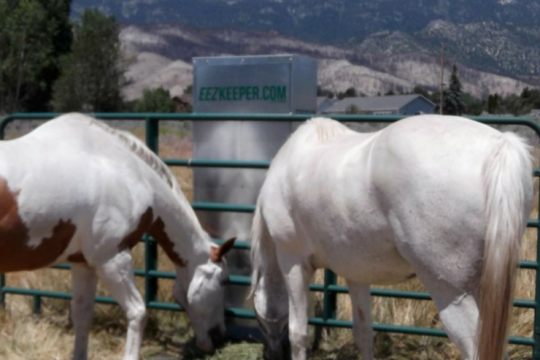 Automatic Hay Feeder Saves You Time and Takes Away Worry | SLO Horse News