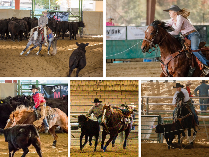 Local Teen Rodeo Stars Shine Brightly at Mid-State Classic Rodeo | SLO Horse News