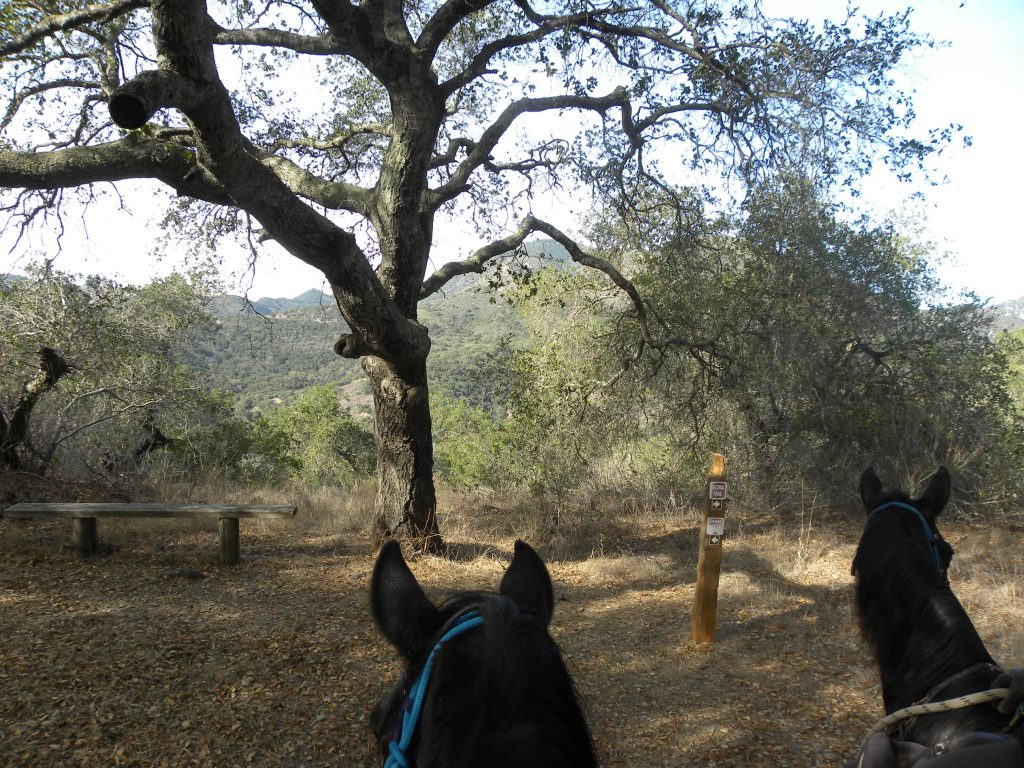 Duna Vista Loop Trail – Lopez Lake : Riding the SLO County Trails | SLO Horse News