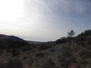 Duna Vista Loop Trail – Lopez Lake : Riding the SLO County Trails   SLO Horse News