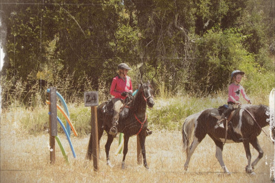 Teaching an Old Rider New Tricks | SLO Horse News