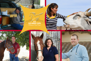 The 2018 SLO Horse Expo Free Vet Talks Schedule is Set