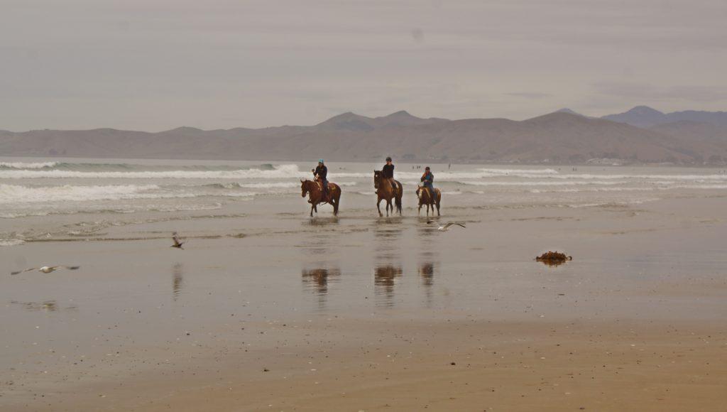 Morro Strand State Beach: Riding the SLO County Trails