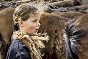Everything is a Sequence: The Story of Horse Action Photographer Elisabeth Haug