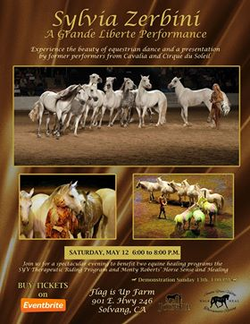 Feel the Healing Power of the Equine Through an Evening of Enchanted Dancing Horses | SLO Horse News