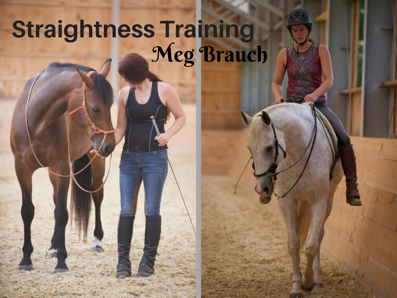 Tune up Your Horse with Straightness Training | SLO Horse News