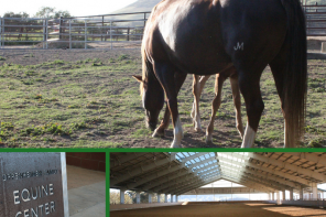 The NEW Cal Poly Horse Unit – A State of the Art Facility