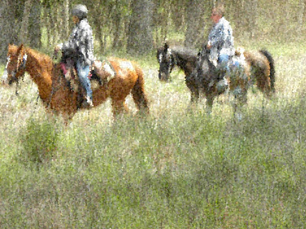 There is Power in a Band of Horse People : Ride Nipomo | SLO Horse News