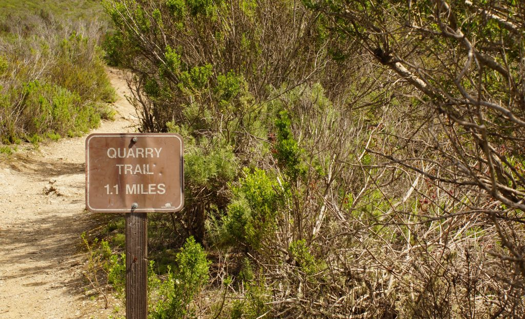 Morro Bay Quarry Trail : Riding the SLO County Trails | SLO Horse News