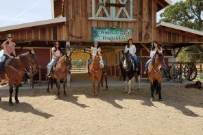 Experience the Central Coast on Horseback with Unique Central Coast Trailrides!
