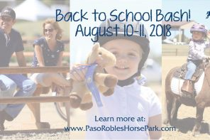 Back to School Bash Horse Camp for Adults and Kids from Newbies to Show Riders