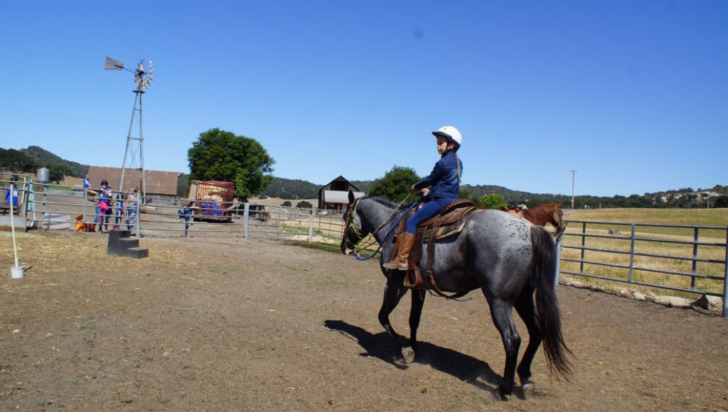 Go from Passenger to Effective Horseback Rider in 15 minutes | SLO Horse News