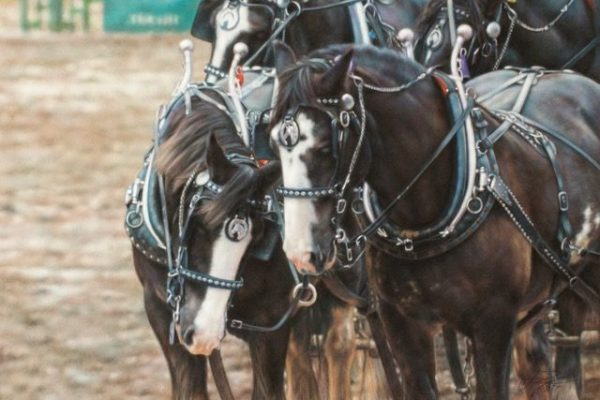 Heartworks : Horse Connection Brings Horses to Life in Art | SLO Horse News
