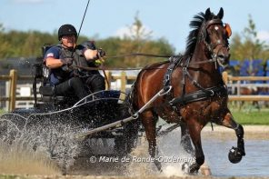 Local Para-Equestrian Driver, Diane Kastama, Speeds Around World Championship Course