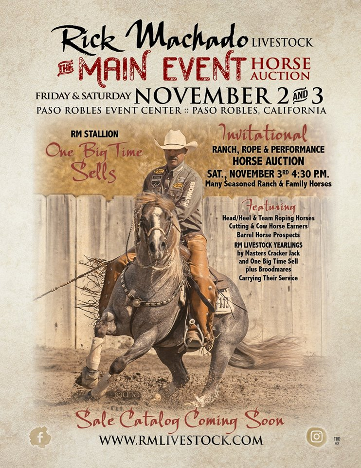 Come Hear the Chant – Rick Machado's Main Event Horse Auction | SLO Horse News