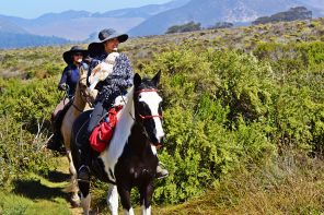 Morro Dunes Trail – Riding the SLO County Trails