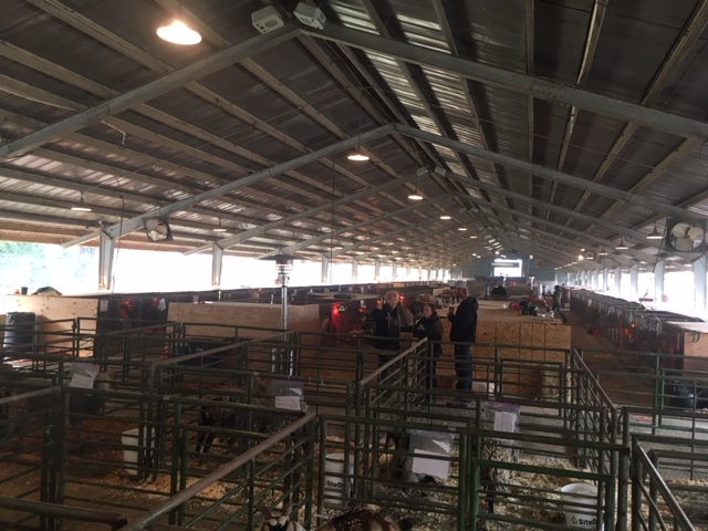 Assisting the People, Property and Pets Affected by the Camp Fire   SLO Horse News