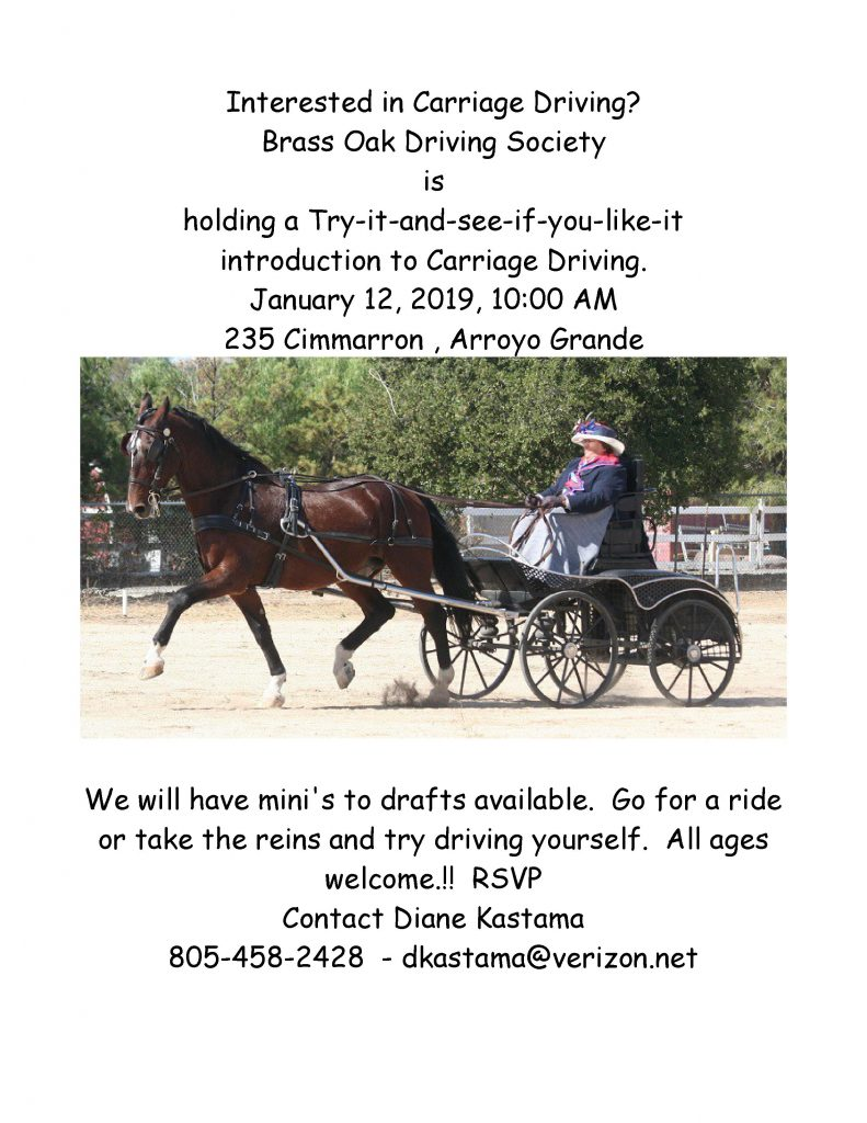 Get in the Driver's Seat - Hold the Lines While Enjoying the View from the Carriage | SLO Horse News