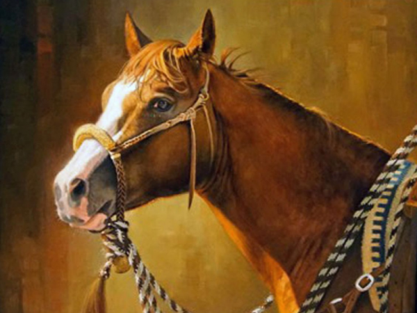 Capturing the Essence of Horse and Human: Western Portrait Artist Vicki Catapano | SLO Horse News