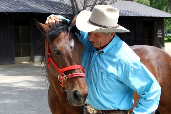 How Do Horses Teach Us to Build Trust and Lower Stress? The Movement 2019 | SLO Horse News