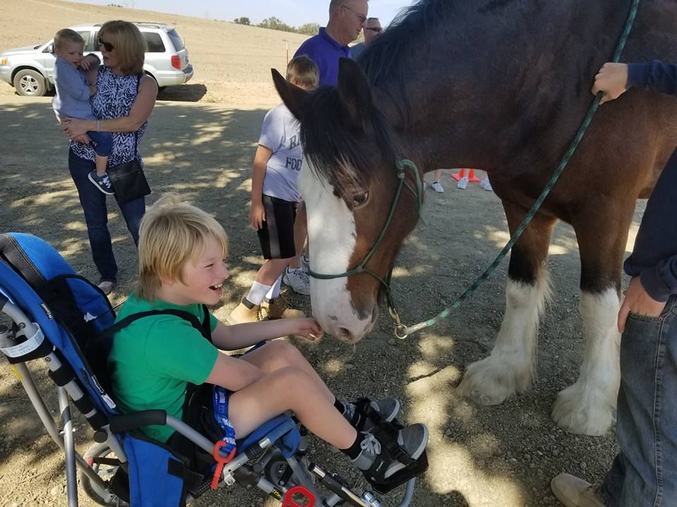 Slow Down and Enjoy a Carriage Ride at the Best of the West Antique Equipment Show  | SLO Horse News