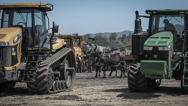 Slow Down and Enjoy a Carriage Ride at the Best of the West Antique Equipment Show    SLO Horse News