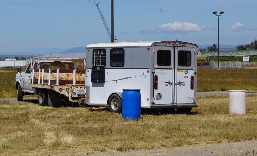 How Comfortable Are You Maneuvering Your Horse Trailer?  | SLO Horse News