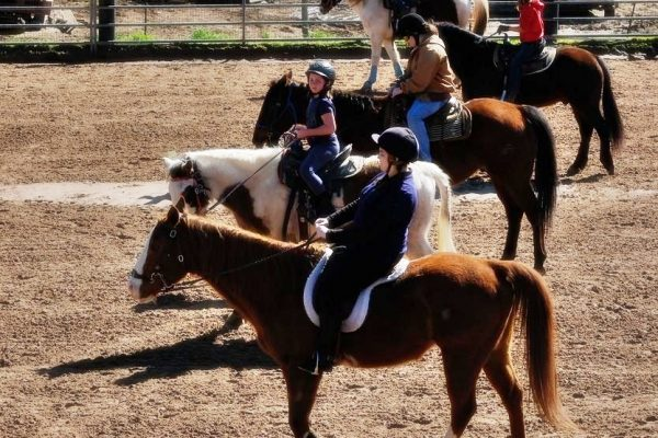 Horsefeathers Summer Horse Camp : Riding, Horsemanship Skills and Games | SLO Horse News
